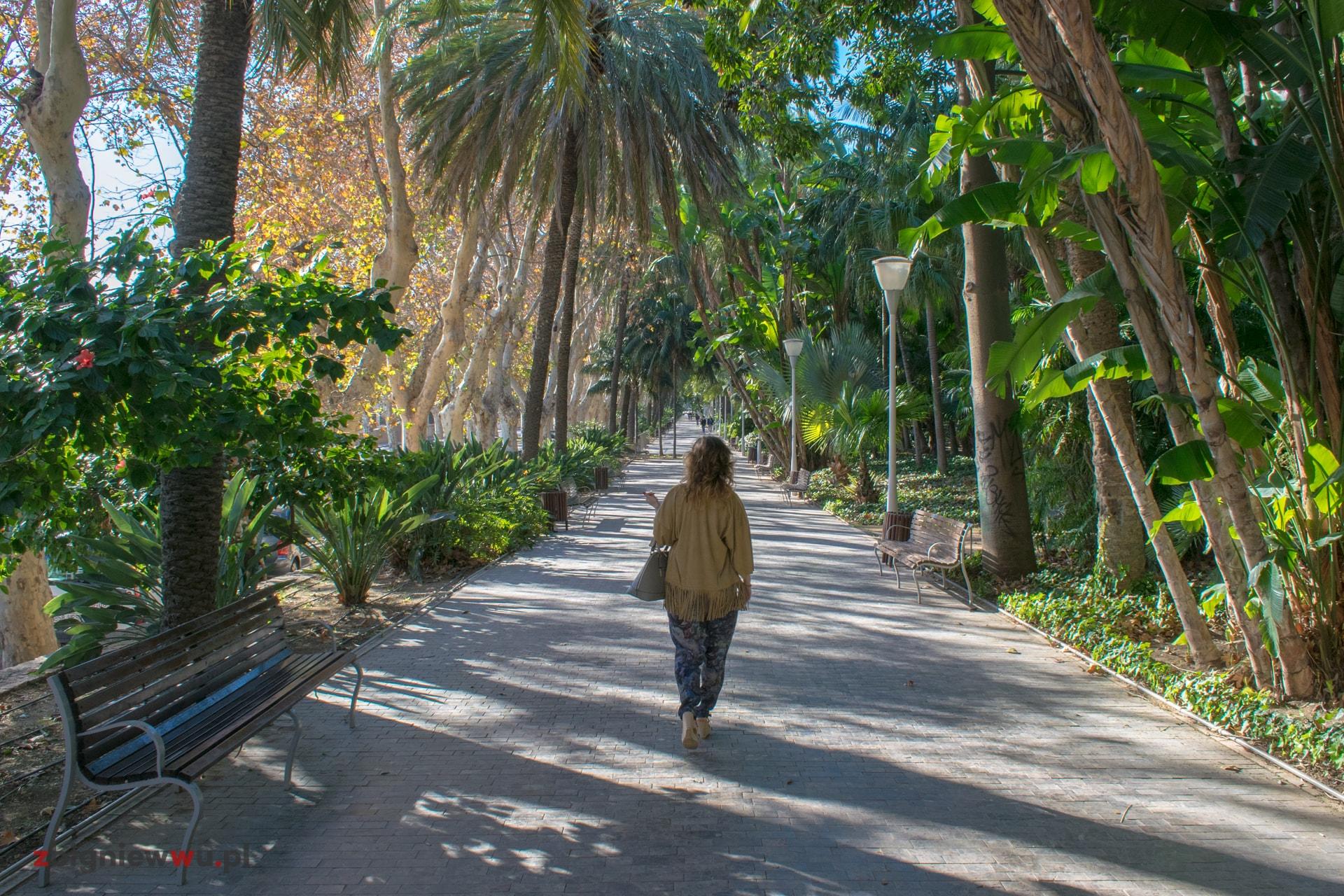 Park w Maladze
