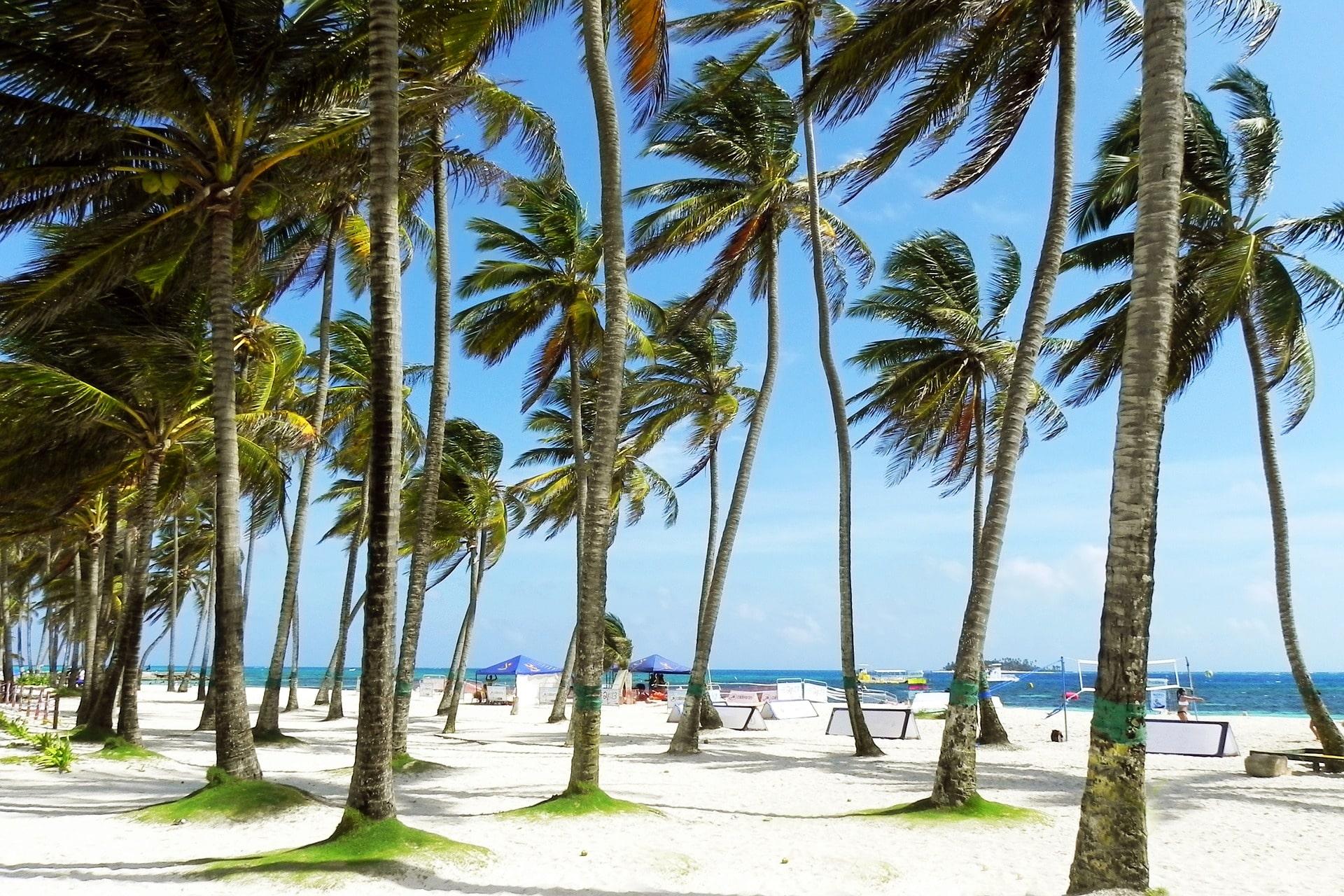 Plaża na Karaibach