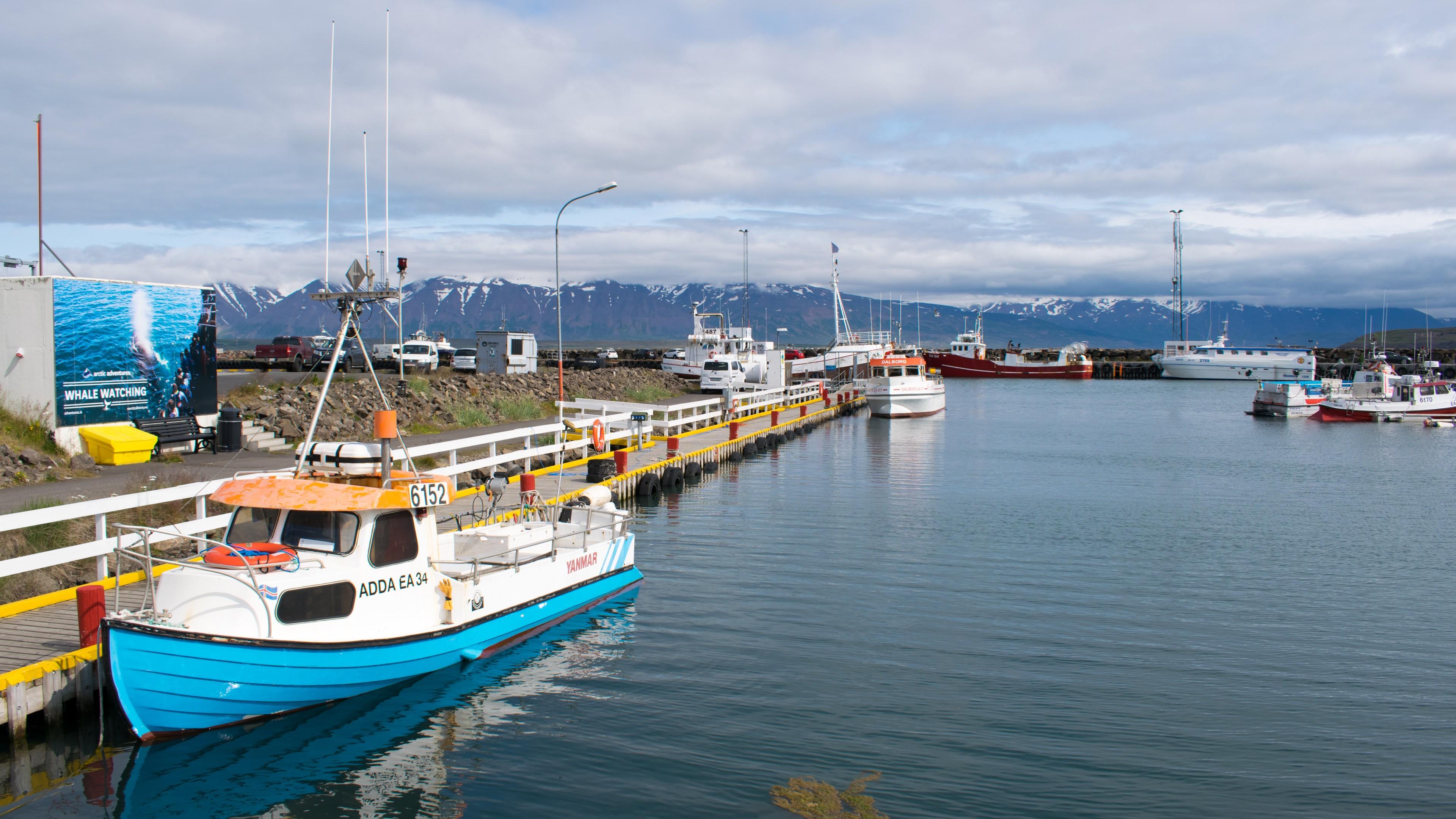 Port w Dalviku