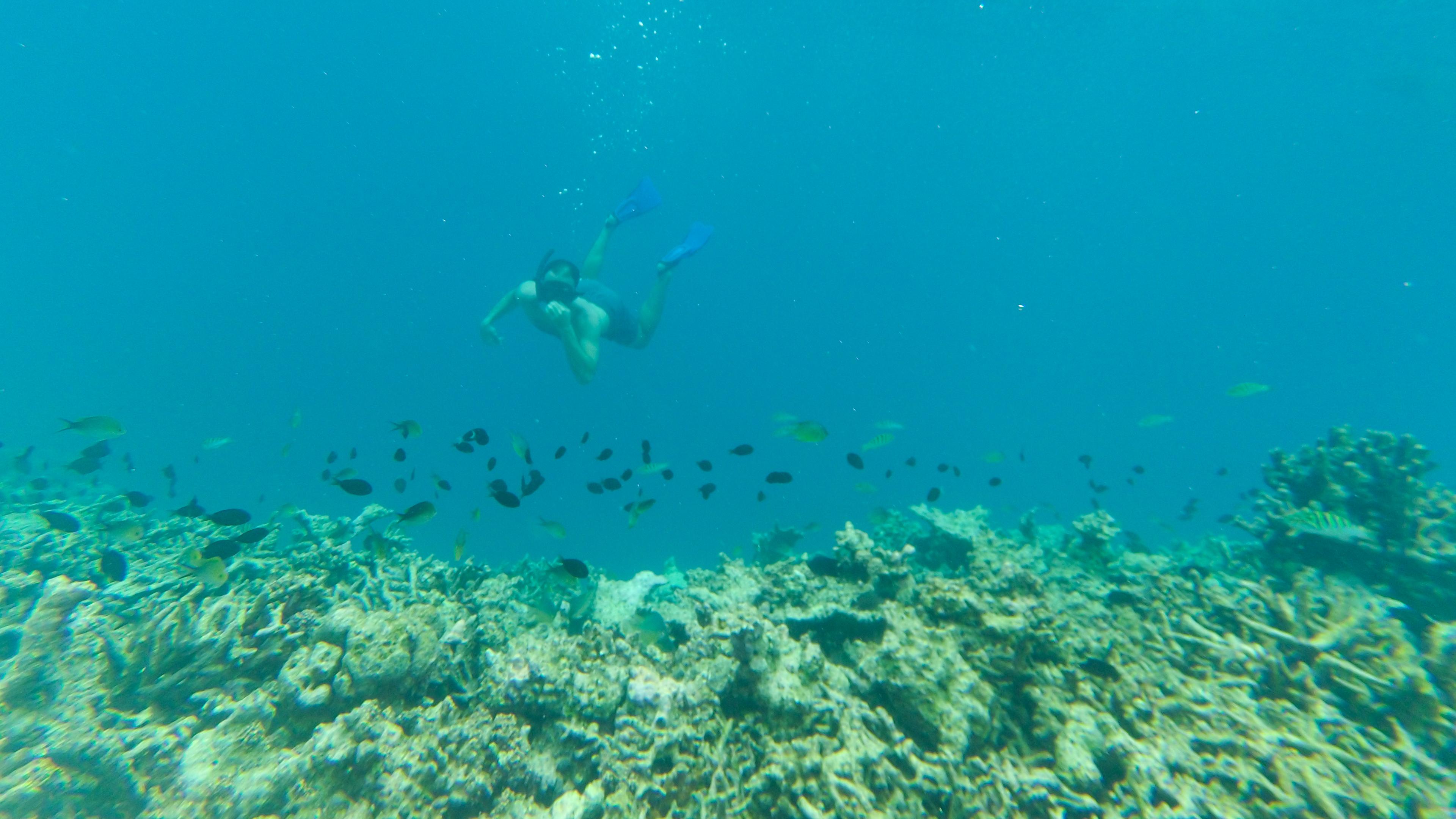Snorkeling na Malediwach