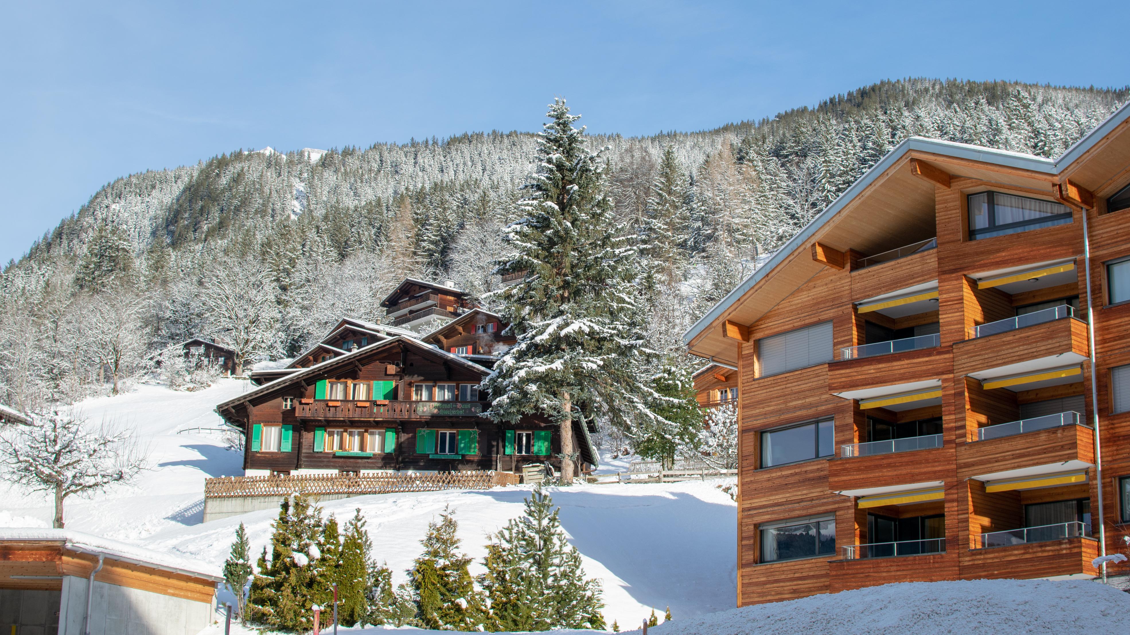 Zimowy Grindelwald