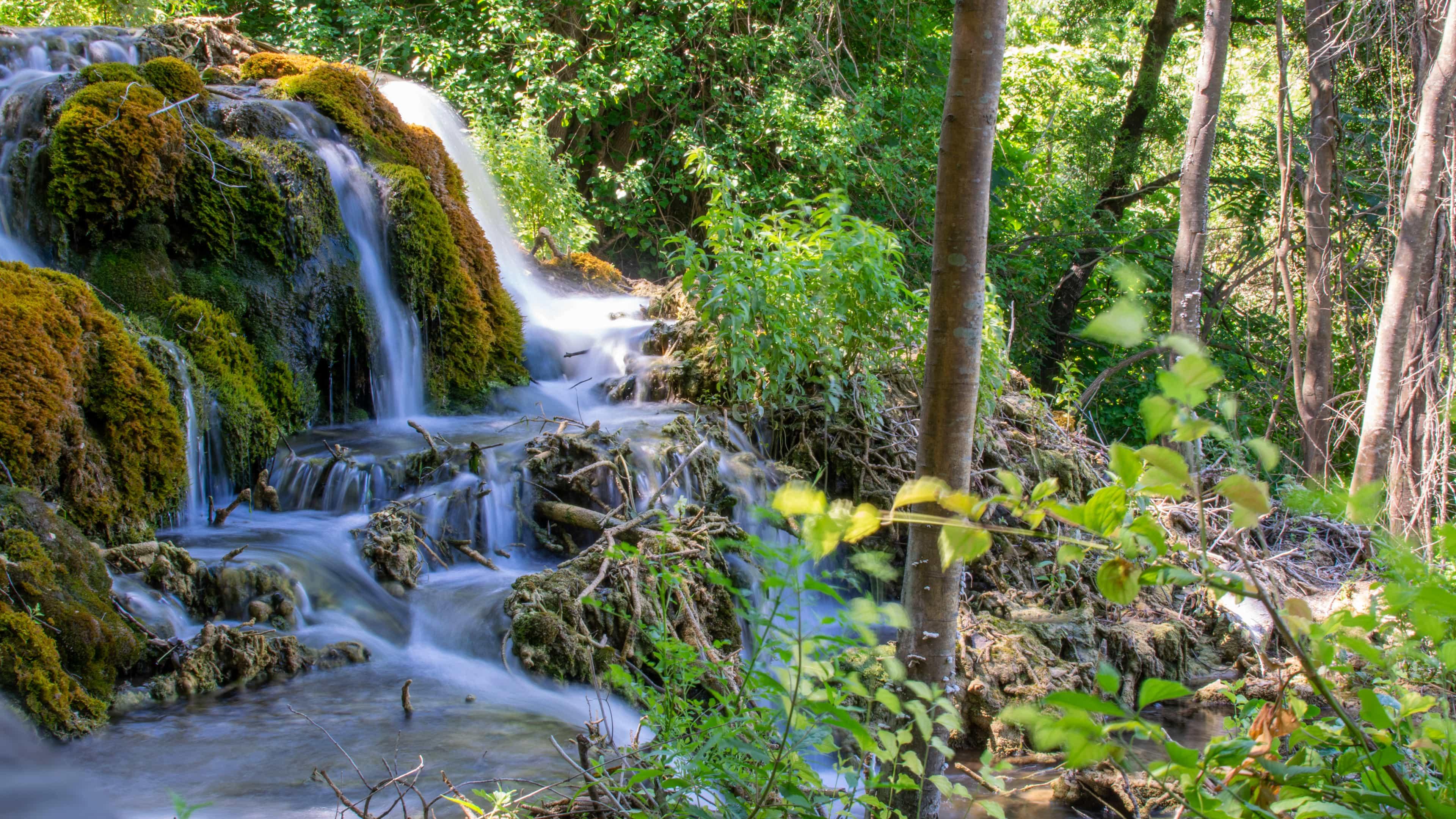 Jeden z tysiąca małych wodospadów gdzieś w PN Krka